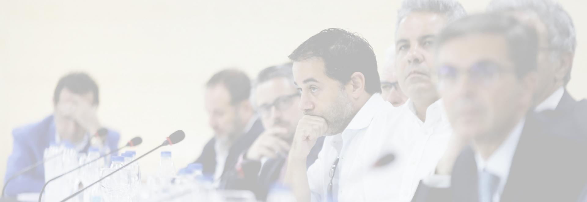 Organigrama – INECA – Instituto de Estudios Económicos Provincia Alicante